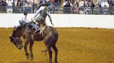 CowboyBanner