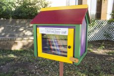 Little Free Libraries on TCC campuses are similar to birdhouses. They are colorful wooden boxes containing different books for students, staff and faculty to read.Bogdan Sierra Miranda/The Collegian