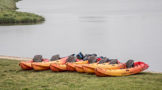 Kayaks line the edge of the Trinity River during TR's Day of Service. A kayak team consisting of 16 faculty, staff and students kayaked to pick up trash out of the river.