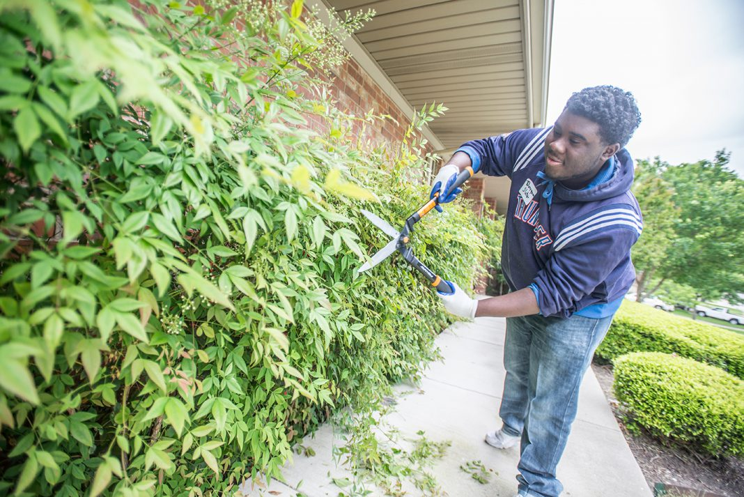 "TR student Daveyaun Slater trims hedges at an ACH services home in south Fort Worth. The ""Pretty"" Park Pavilion group cleaned up yards, a playground and a home."