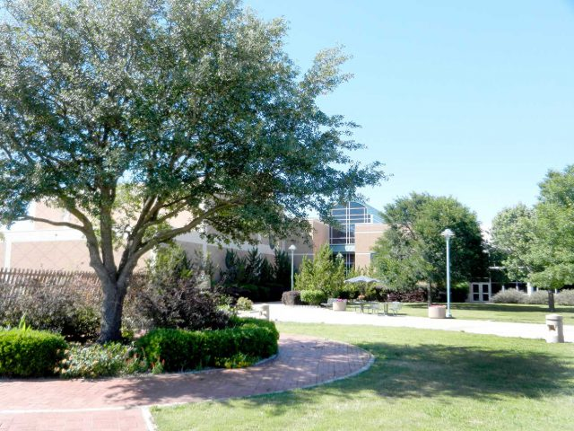 SE Campus was named a Tree Campus by the National Arbor Day Foundation in 2013. It offers a variety of trees students can use to study under or enjoy during leisure time.