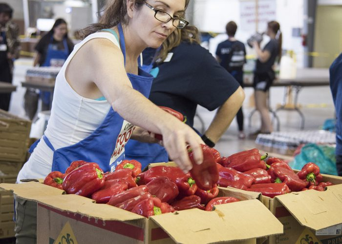 NW art professor Trish Igo goes through a box of red bell peppers at the NW Community Food Market Sept. 15.
