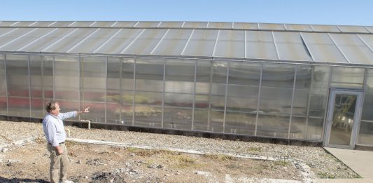 Standing on the foundation of the greenhouse that was destroyed by a 2016 fire, NW horticulture program coordinator David Bulpitt explains what will change with the new structure.