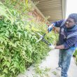 """TR student Daveyaun Slater trims hedges at an ACH services home in south Fort Worth. The """"Pretty"""" Park Pavilion group cleaned up yards, a playground and a home."""